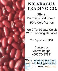 Red  Beans and Credit For Exportation